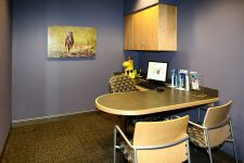 Lincoln Pediatric Dentistry East Office - patient meeting area